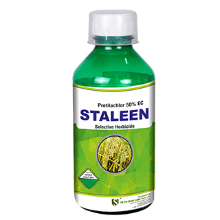 Staleen