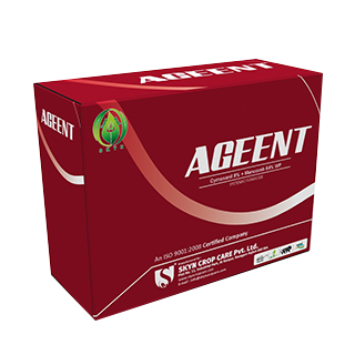Ageent