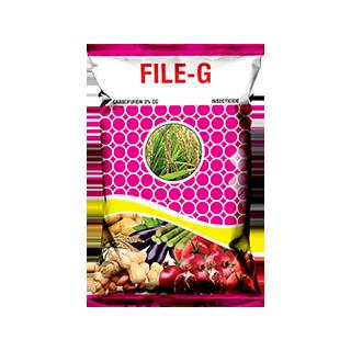 File-G