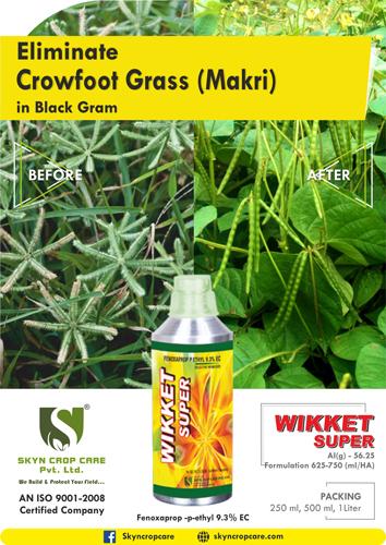 Crowfoot Grass (Makri) by Wikket Super(Fenoxaprop -p-ethyl)